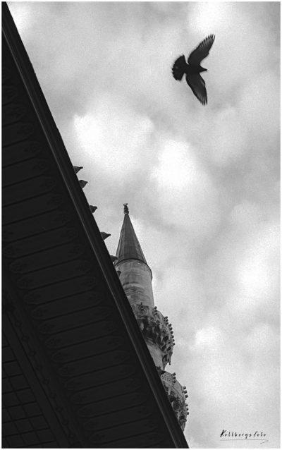 Istanbul 1990